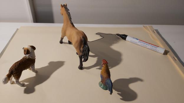 Tiere in Position bringen, damit der Schatten gut aussieht