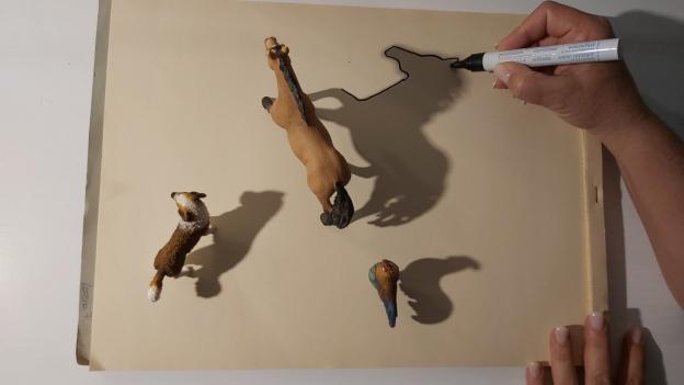 Schatten mit Stift nachfahren