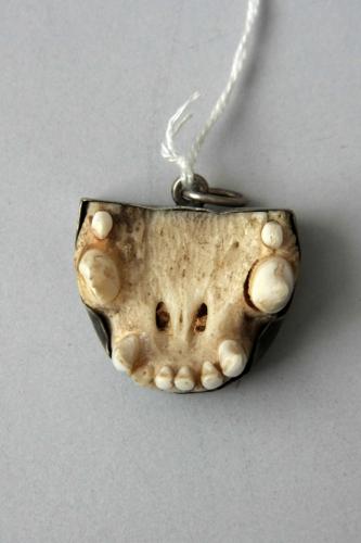 Mardergebiss, 19. Jh., Silberfassung ©Dommuseum/Kral