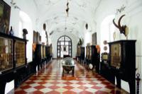 Kunst- und Wunderkammer © Dommuseum/J. Kral Möchte Belegexemplar