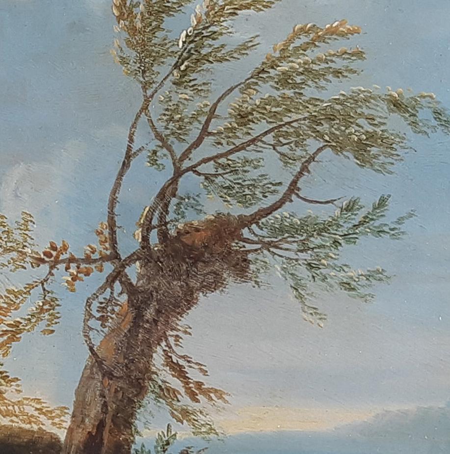 Veranstaltung Führung zur Sonderausstellung: Natur wird Bild. Österreichische Barocklandschaften im DomQuartier Salzburg